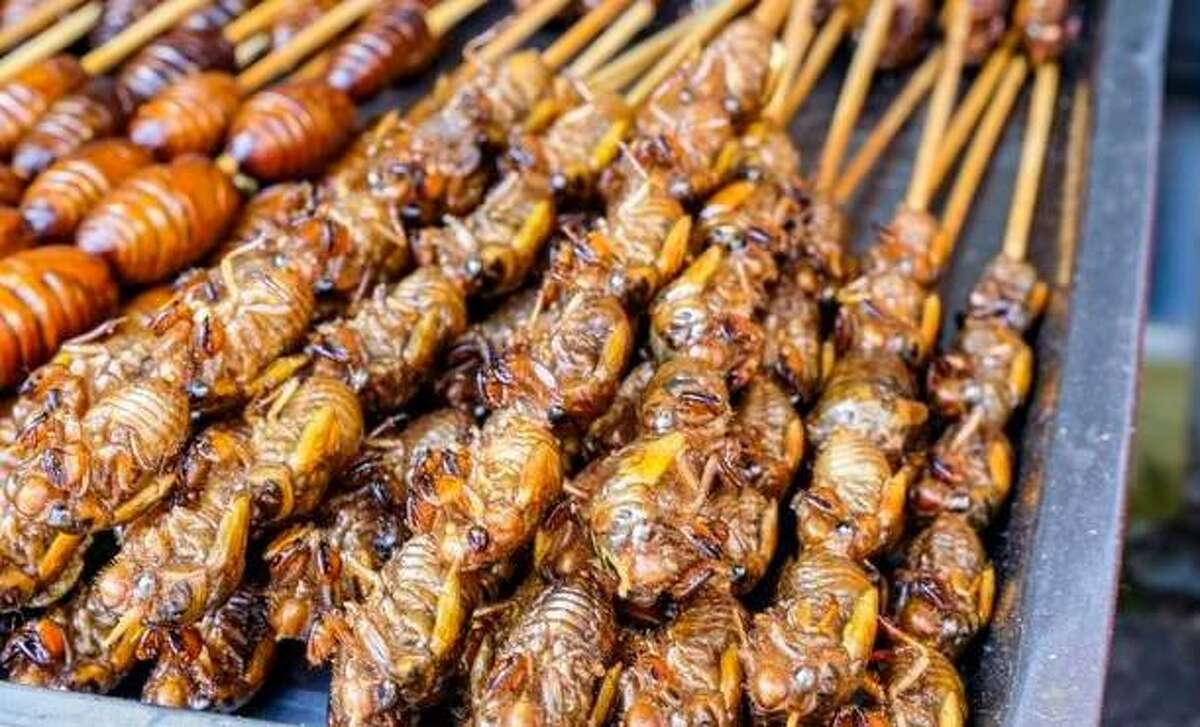 Deep-fried cicadas served on skewers at a market in China.