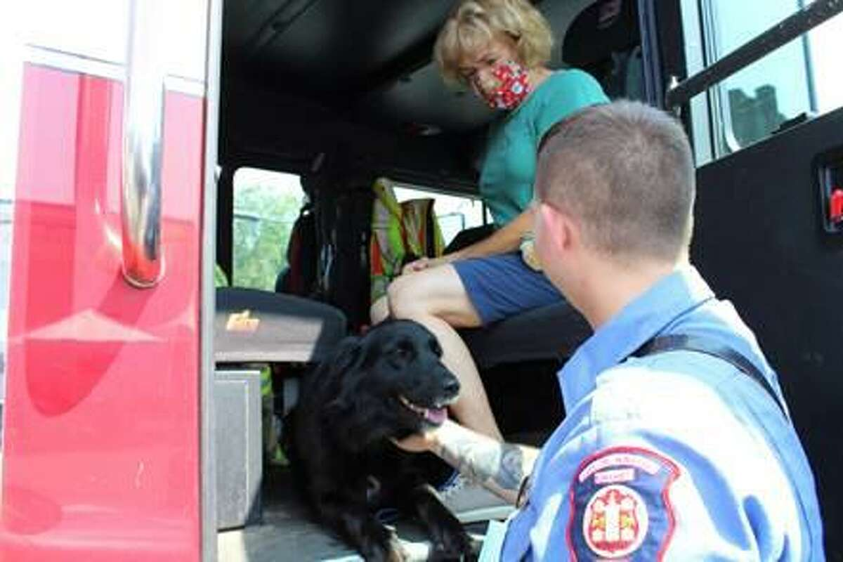 Community Health & Wellness Center in Torrington and Winsted held a community celebration Aug. 11, in recognition of National Health Week. An ECAD dog gets a pat from an EMT at the event.