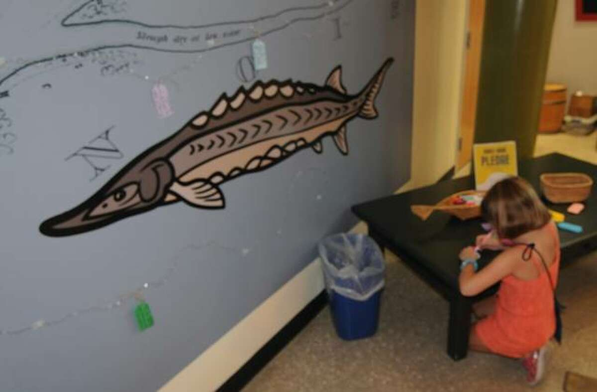 Seven-year-old Rochelle Rakers of Highland takes part in a sturgeon-related activity on Saturday at the Great Rivers Museum.