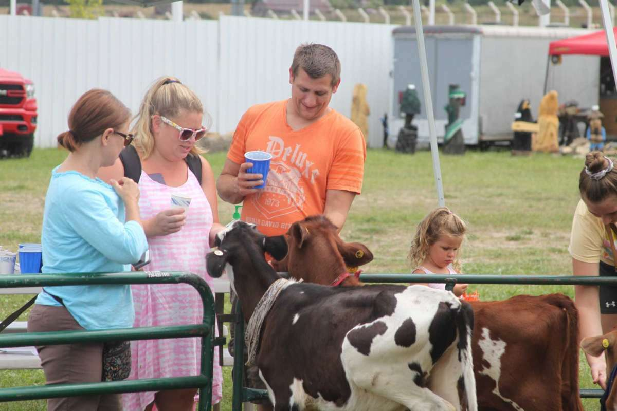 """File - Animals from the Michigan State University Extension 4-H program are a popular """"attraction"""" at the Manistee County Fair."""