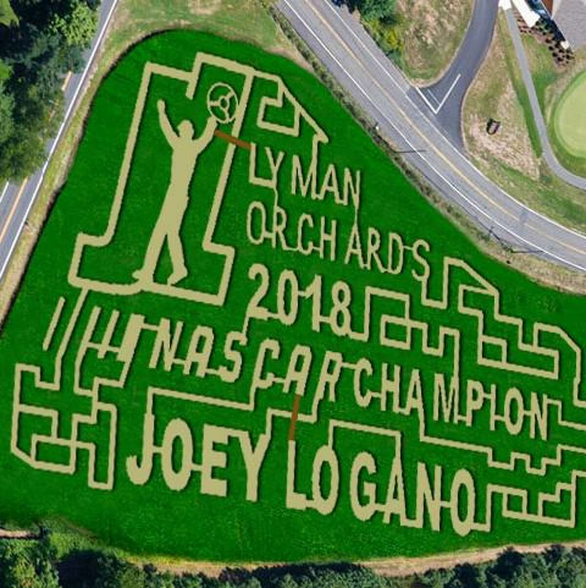 Lyman Orchards' maze