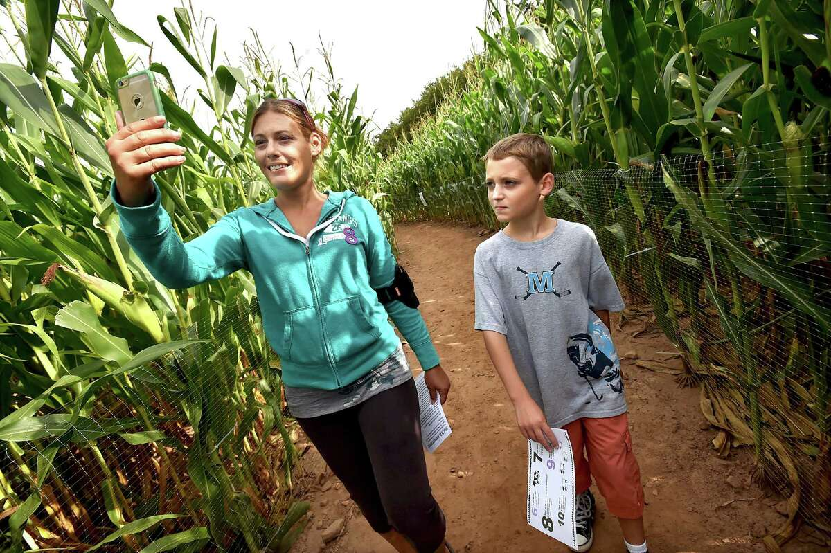 The 17th year of the corn maze at Lyman Orchards features the historic Lyman Orchards' homestead in celebration of their 275th anniversary, Saturday, September 3, 2016. The maze has two miles of pathways on nearly four acres of corn crop and trivia questions at 32 Reeds Gap Road in Middlefield. The maze runs 7 days a week through November 6. Monday through Friday from 3 p.m. - 6 p.m. and from 10 a.m. - 6 p.m. on weekends. $1 from every admission ticket sold is donated to the American Cancer Society. (Catherine Avalone/New Haven Register)