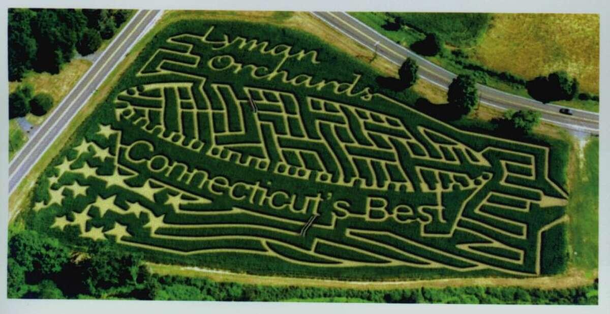 contributed photo - Sept. 4, 2003 - Lyman Orchards Corn Maze.