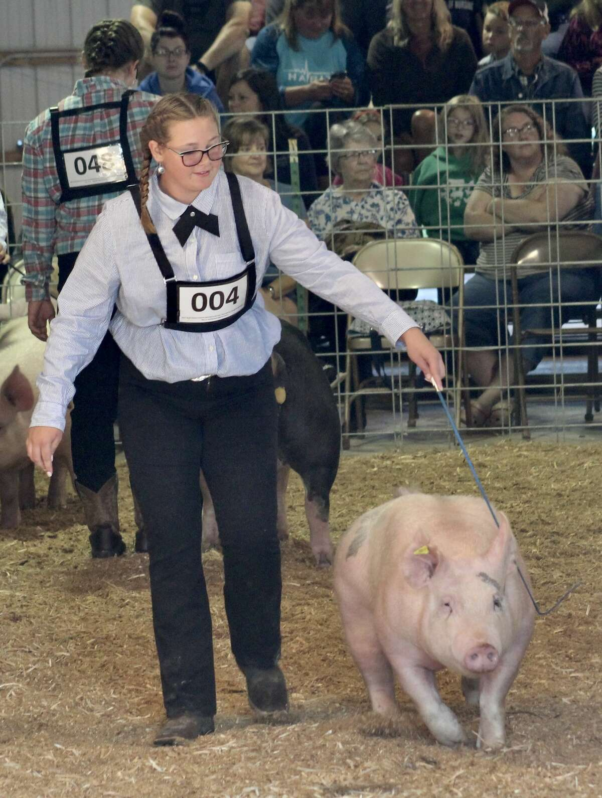 Eighth-grader Anna Bradford competed in the 4-H swine show on Tuesday at the Manistee County Fair, winning first place for the juniors division.
