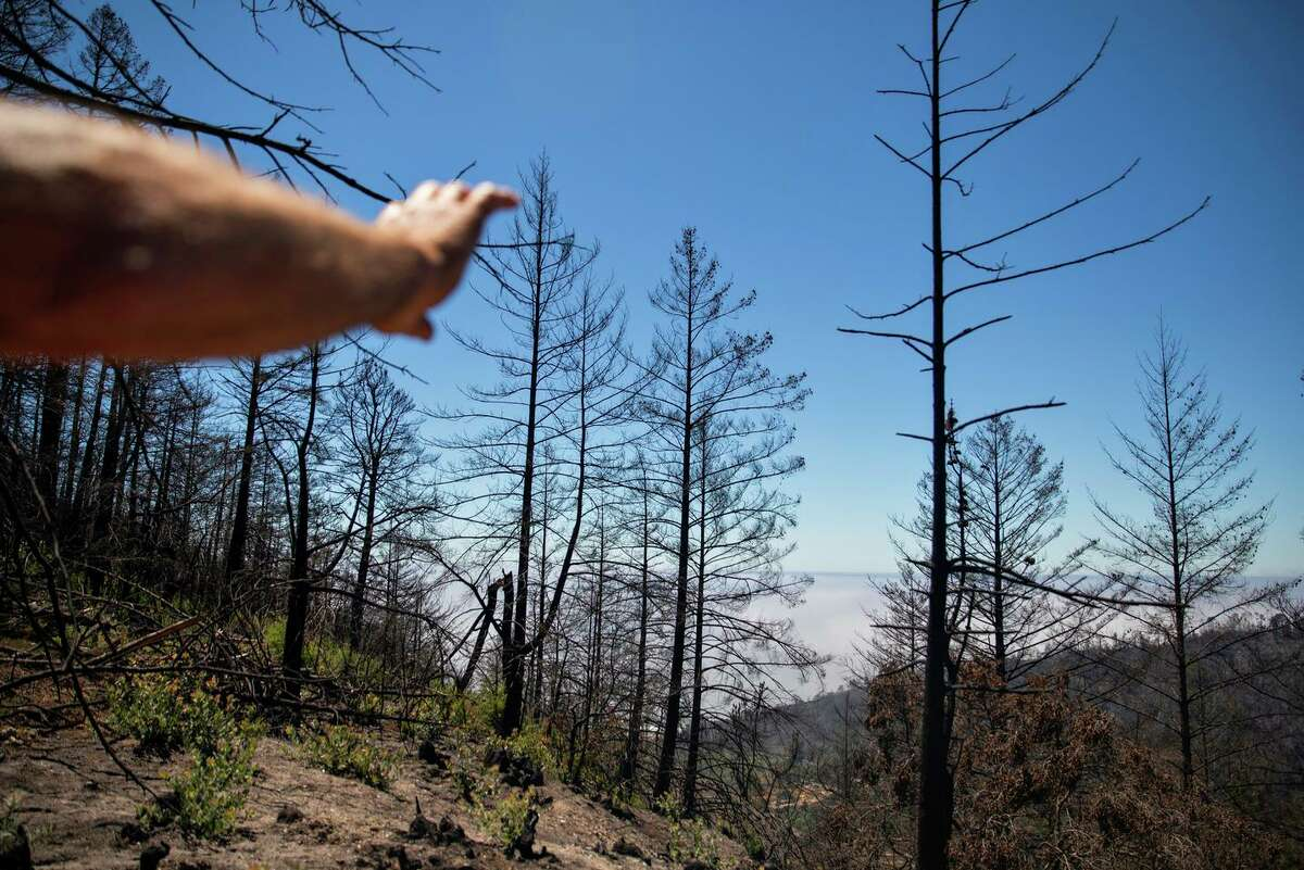Steve Smith, who lives in the community Last Chance, points out the CZU complex burn scar where the fire destroyed his hand-built home of 50 years.