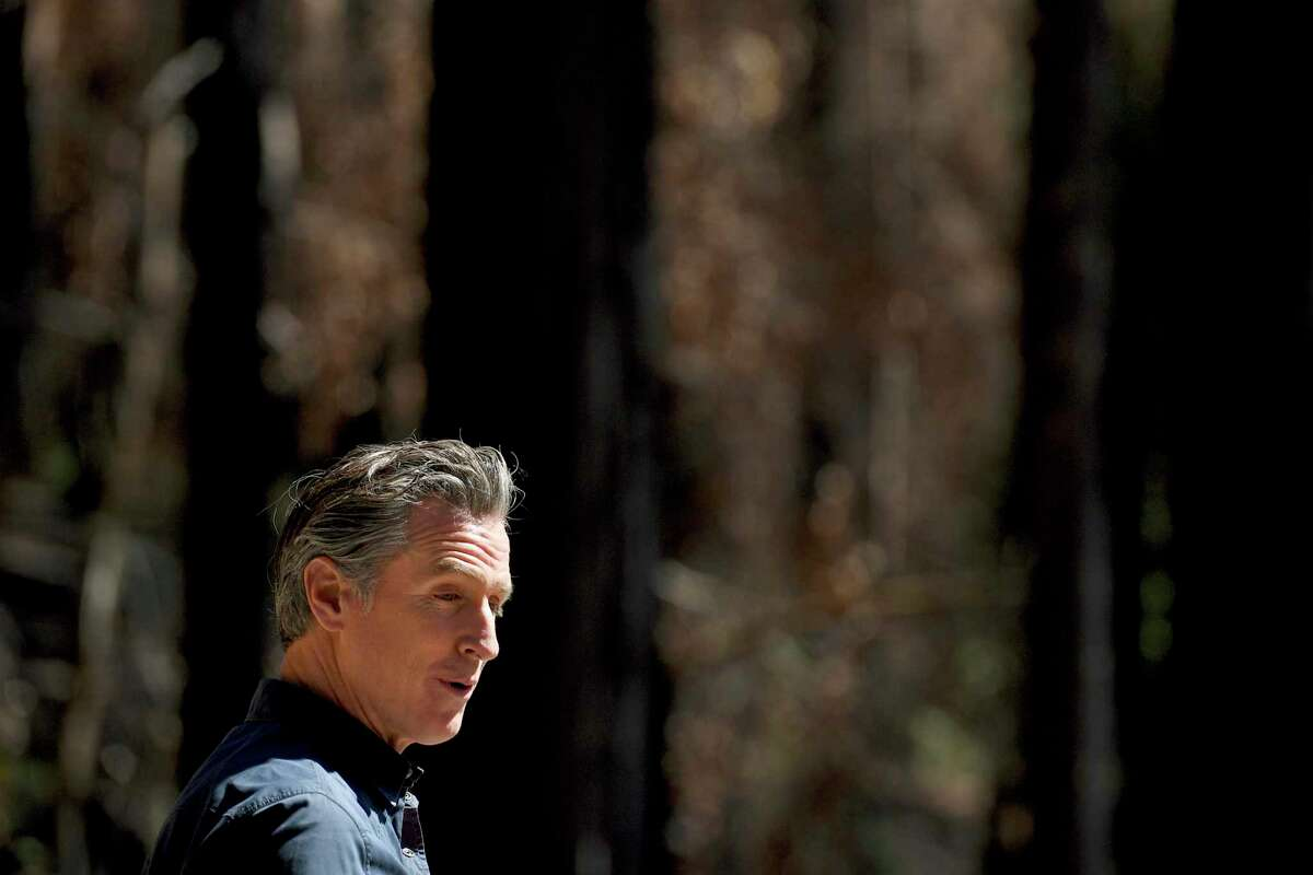 California Gov. Gavin Newsom talks to reporters at Big Basin Redwoods State Park near Boulder Creek on Tuesday and pledged a stronger response to wildfires.