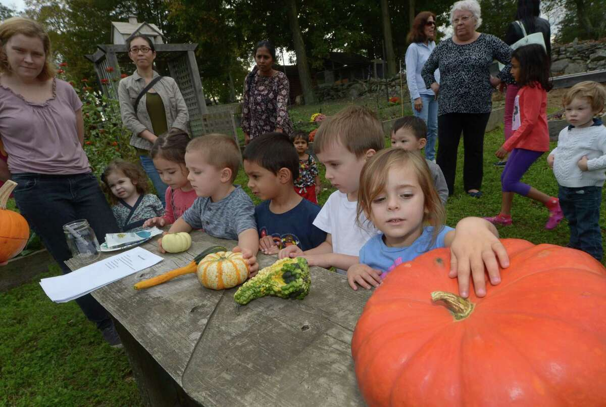 """Wilton resident Hailey Hoffman, lower right, touches a large pumpkin at the Ambler Farm in Wilton in a previous year. One of the upcoming happenings with the Wilton Library in the town is an in person """"Courtyard Police Officer Story time,"""" on Thursday, Aug. 26, from 10:15 to 10:45 a.m. in the library's reference courtyard."""