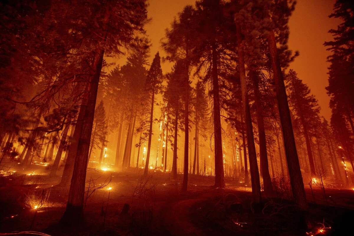 In this long exposure photograph, the Caldor Fire burns through trees on Mormom Emigrant Trail east of Sly Park, Calif., Tuesday, Aug. 17, 2021.
