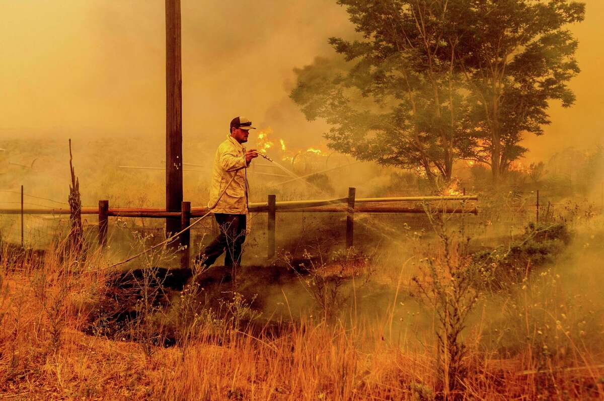 A man douses flames as the Dixie Fire burns south of Janesville in Lassen County on Tuesday.