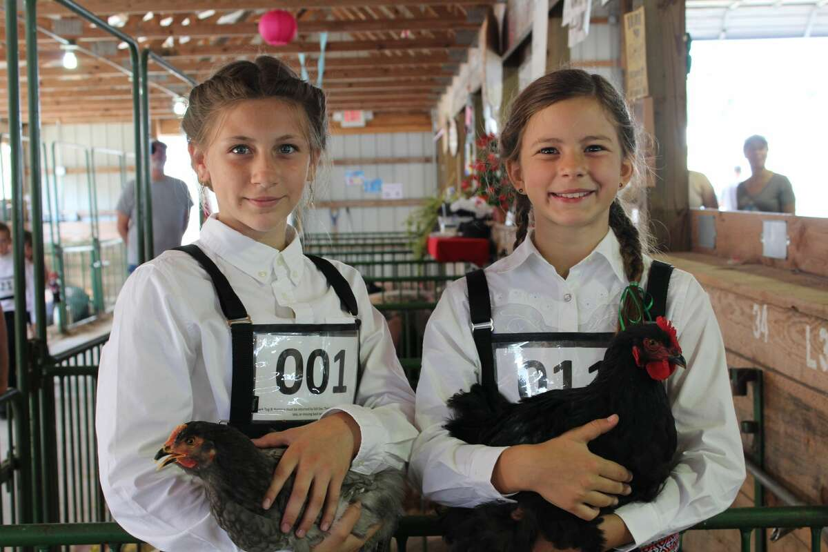 ShawNee Renner and Allison Burrus hold their chickens on Wednesday at the Manistee County Fair.