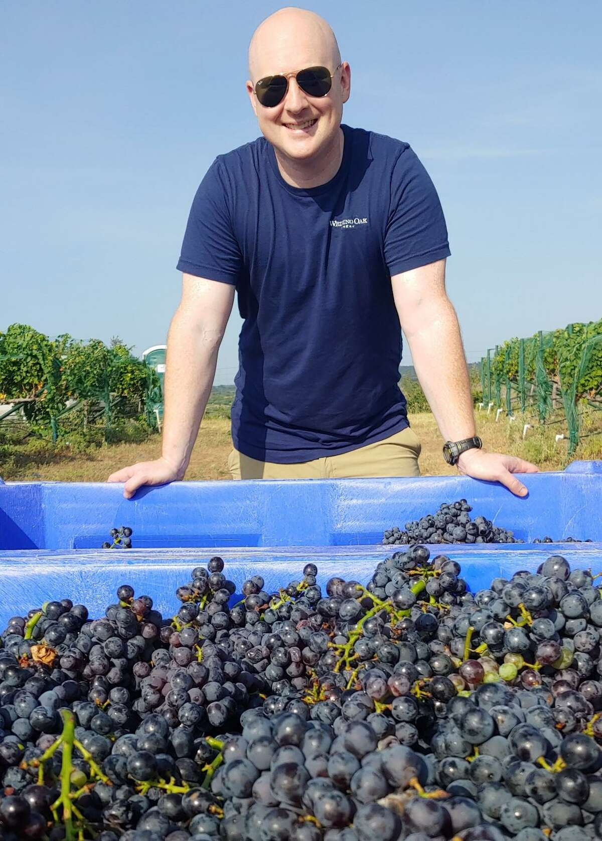 """Pictured is Seth Urbanek of Wedding Oak Winery. Urbanek, winemaker at Wedding Oak Winery said, """"2021 is far from being an ordinary year. If you guessed that the extreme weather in Texas will have an impact on this year's grape crop, you guessed right."""