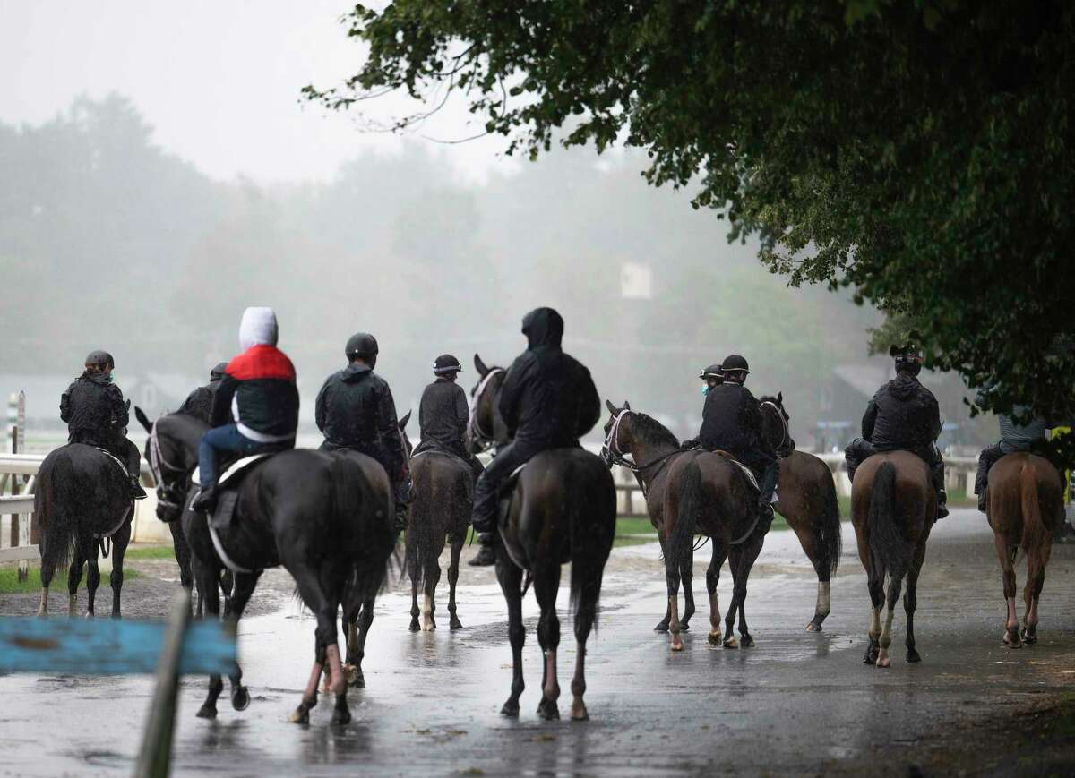 A large number of horses in training wait their turn to head to main track during the rains that fell at the Saratoga Race Course on Thursday, Aug. 19, 2021, in Saratoga Springs, N.Y.