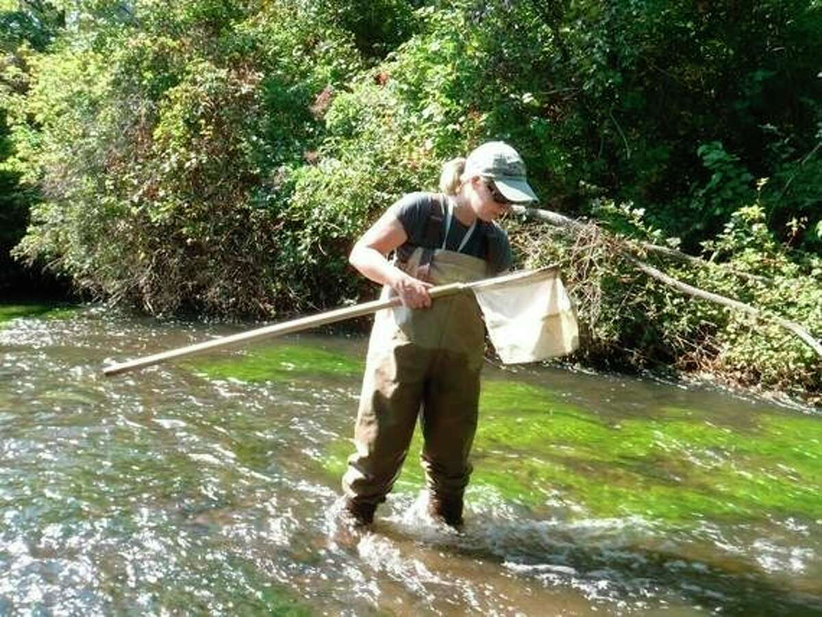 A biologist samples for aquatic insects. Michigan Department of Environment, Great Lakes and Energy staff sampled 741 locations over the summer of 2020. (Courtesy photo/Department of Environment, Great Lakes & Energy)