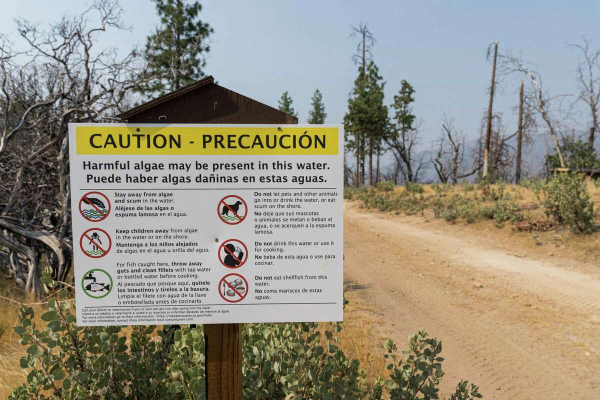 A sign warning visitors of harmful algae is located at the Hites Cove / Devils Gulch trailhead area, on Thursday afternoon, August 19, 2021, in Mariposa County, California. A family of hikers, found dead, had parked their car at this trail head.