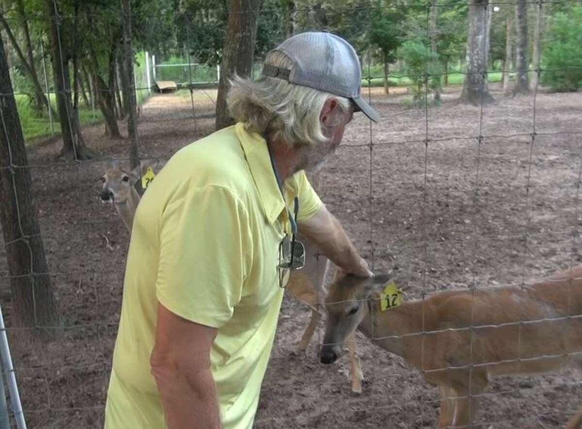 The dogs killed 15 fawns and nine adult deer, Christlieb said. He estimated that the deadly attack cost him up to $150,000.