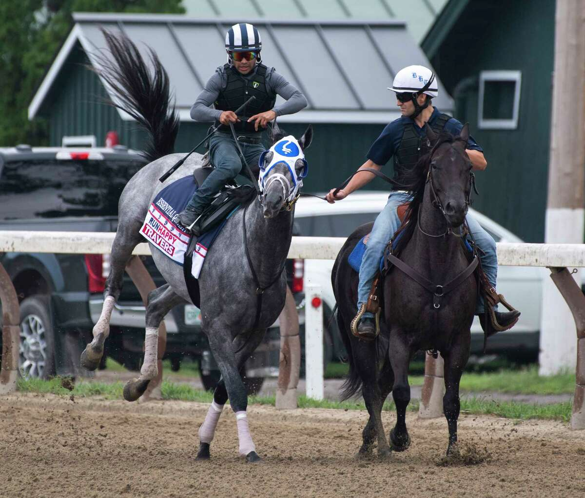 Essential Quality with jockey Luis Saez kicks up his heals Saturday Aug 21, 2021on the way to his final speed work before his appearance in the Travers Stakes net week at the Saratoga Race Course in Saratoga Springs, N.Y. Photo Special to the Times Union by Skip Dickstein