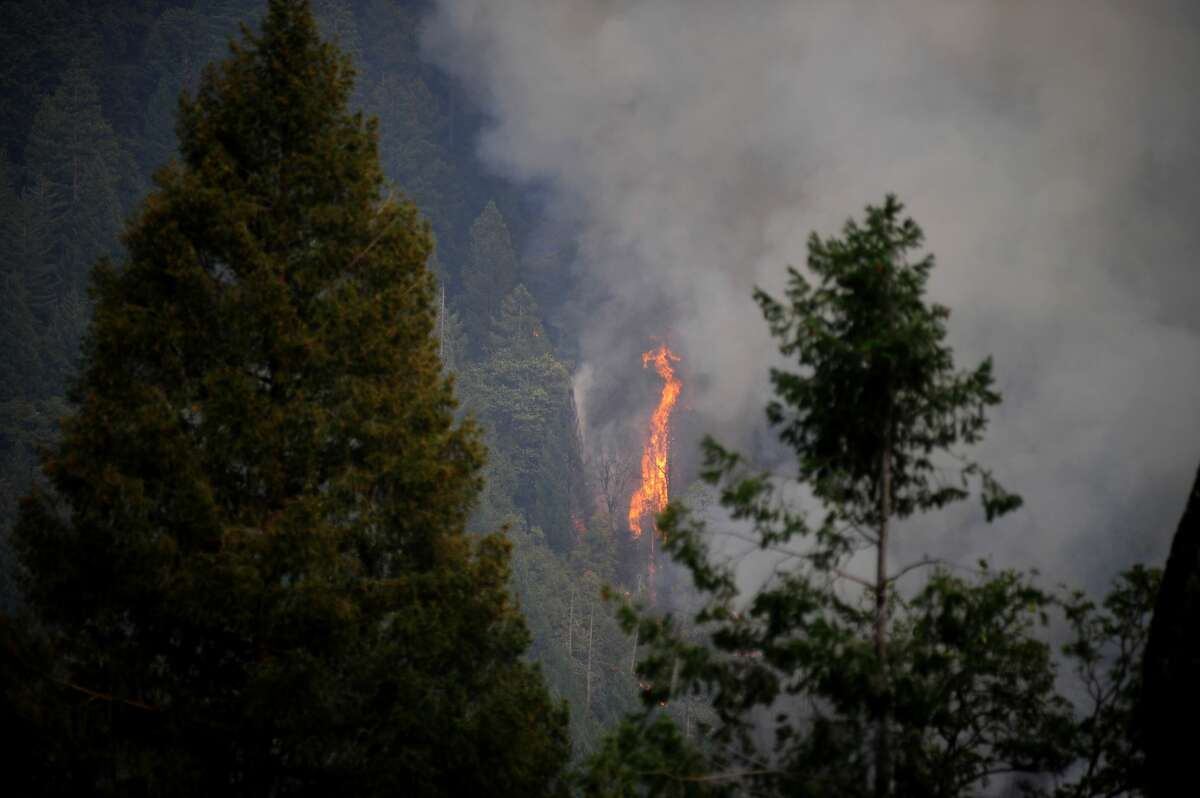 The Caldor Fire burns across the Camp Creek off of Mormon Emigrant Road in Eldorado National Forest in California on August 20, 2021.