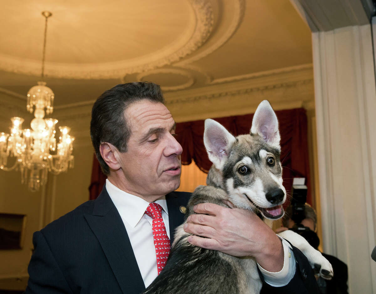 Gov. Andrew M. Cuomo and Captain in 2018, just after the dog became a member of the Executive Chamber household.