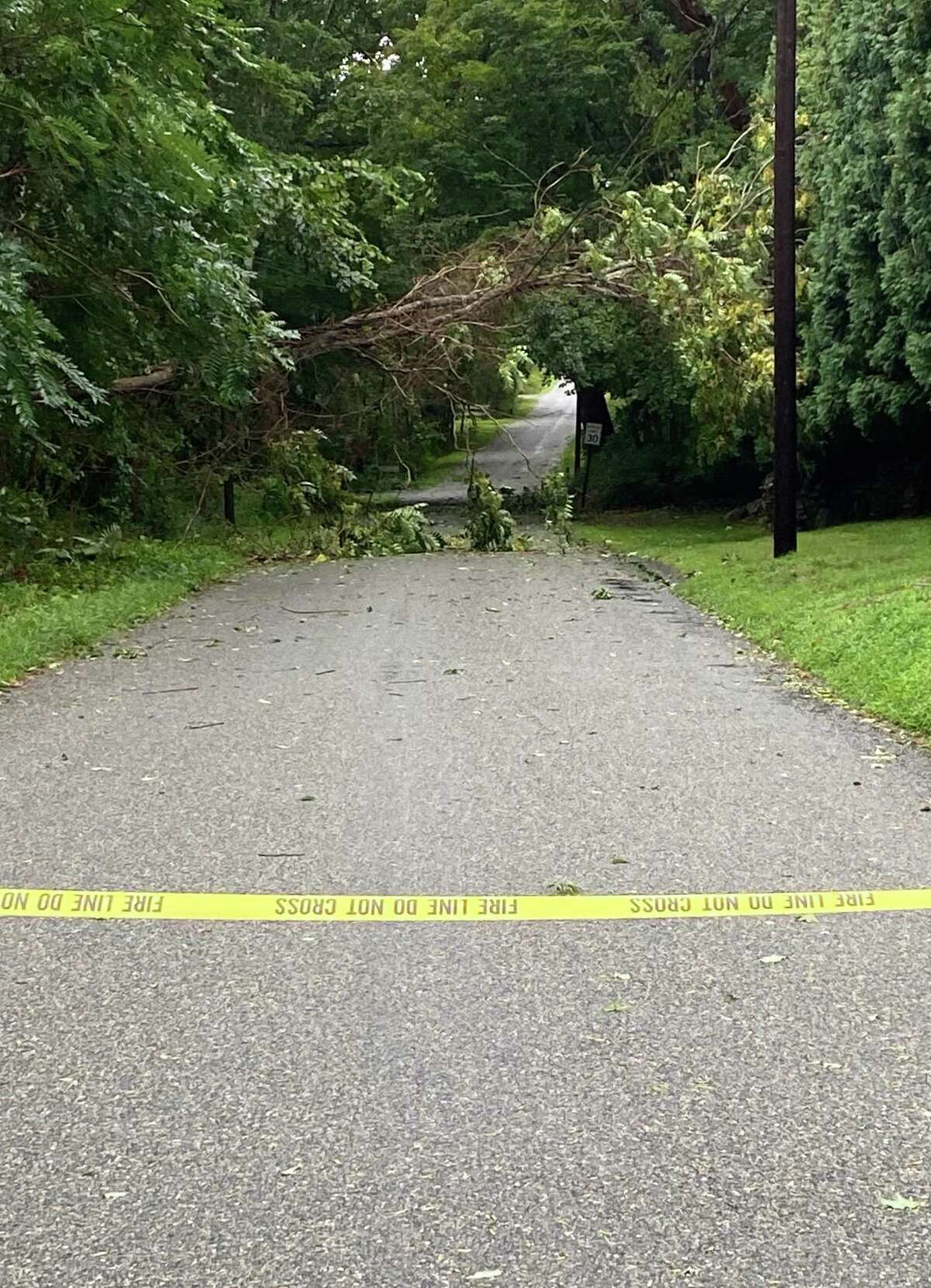 A tree fell in Canterbury, Conn. and remained hanging above the road during Tropical Storm Henri