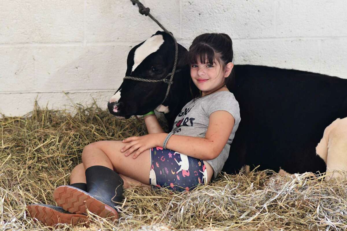Madelyn Wheeler sits with her cow in one of the barns.