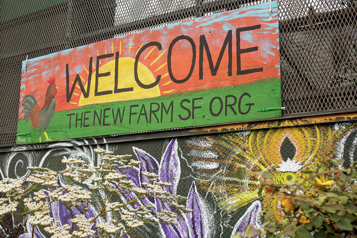 Sights from the New Farm at 10 Cargo Way in San Francisco.