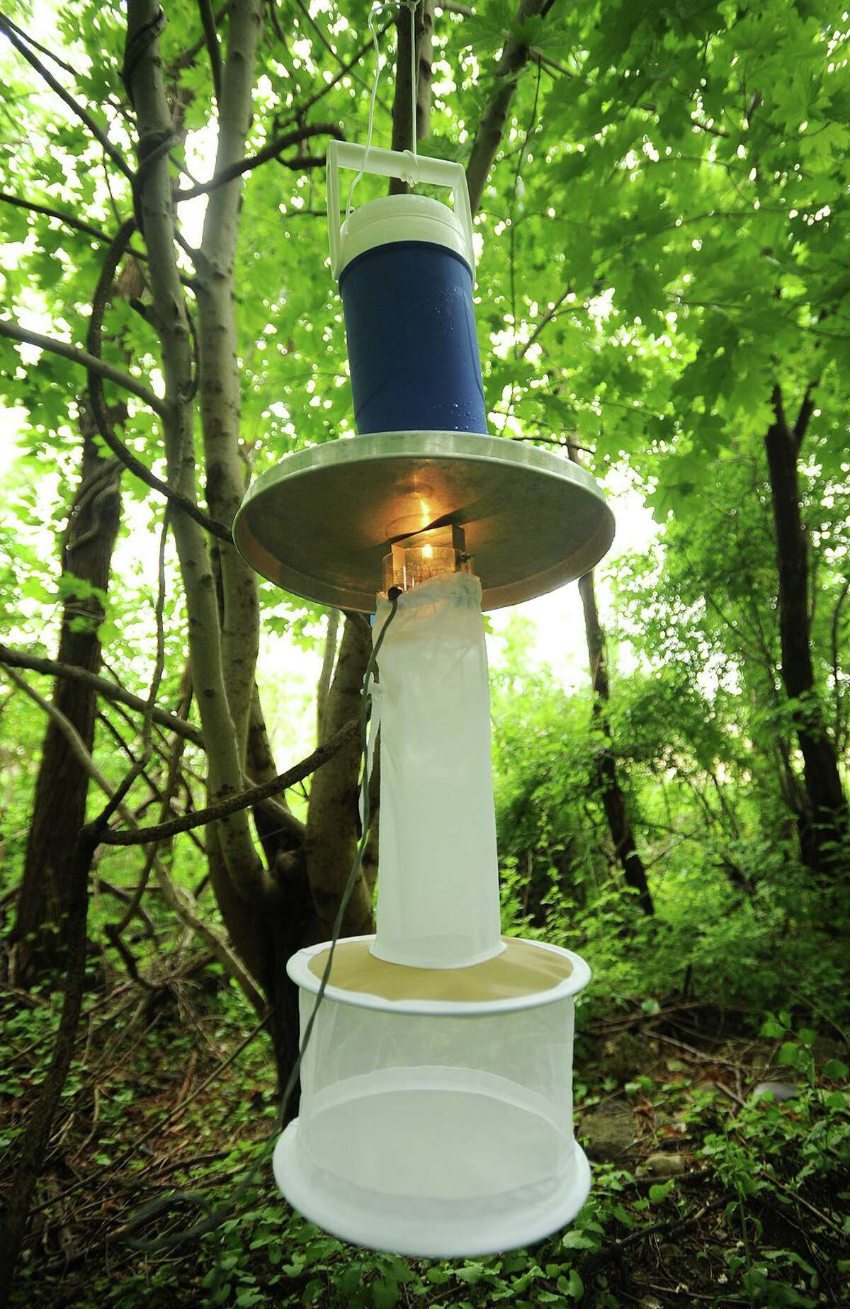 A mosquito sampling trap, known as a light trap, hangs from a tree near DeLuca Field on Main Street in Stratford, Conn. on Monday, June 1, 2015. The Connecticut Agricultural Experiment Station collects mosquitoes every year from a wide range of locations to track West Nile Virus.
