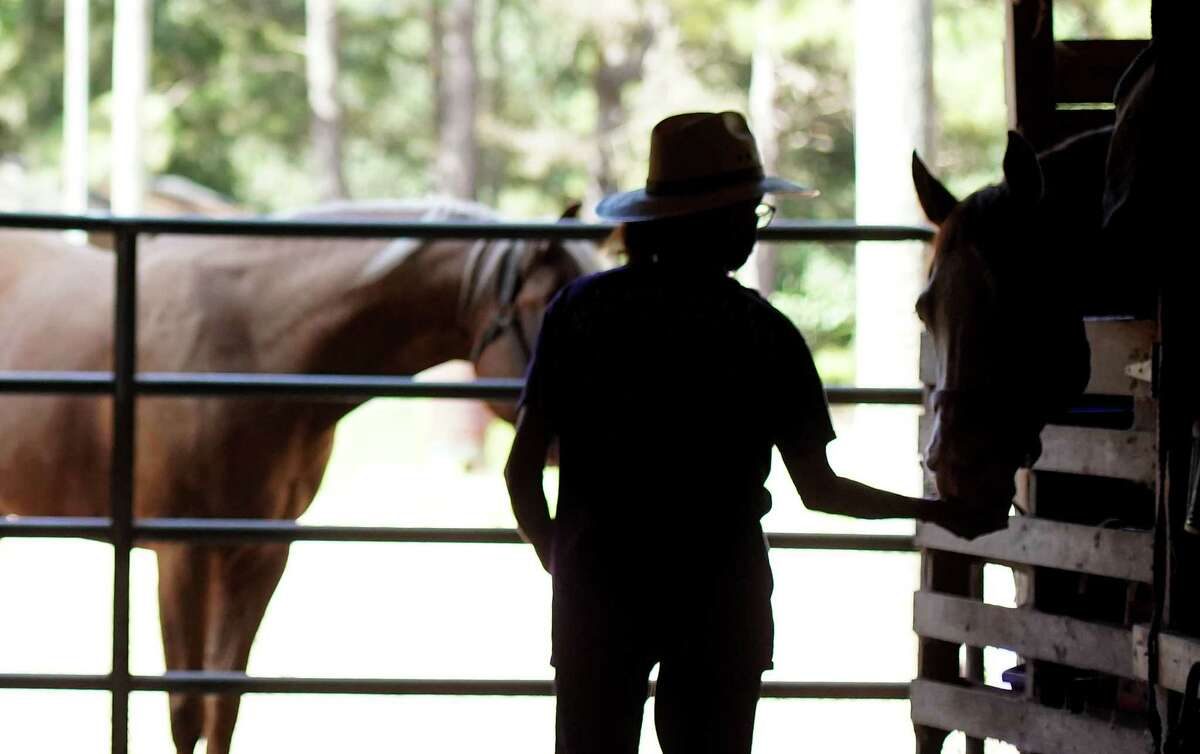 Lisa Rogers checks on rescue horses in the barn at Amazing Grace Acres Equestrian Rescue in Ace on Friday, Aug. 20, 2021.