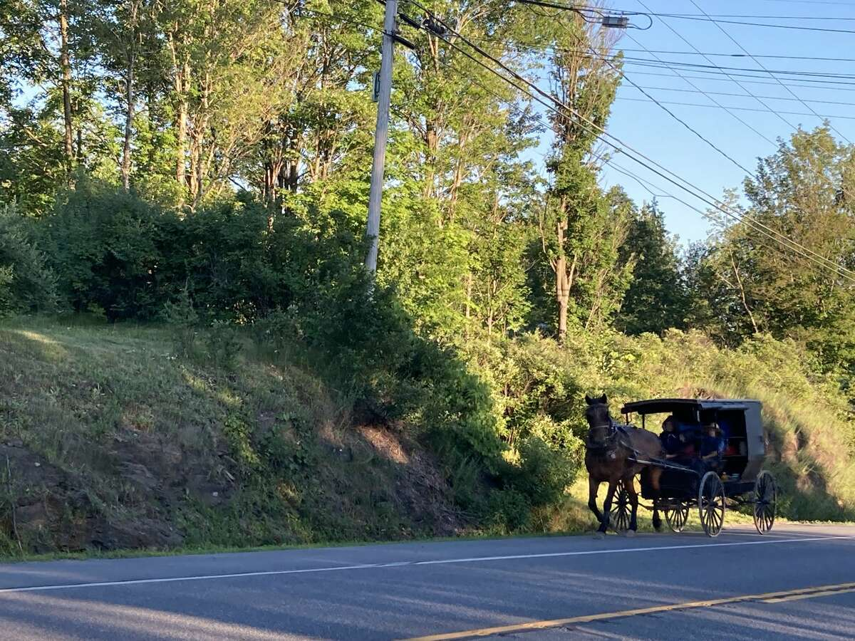 A horse pulls along an Amish buggy on Route 40 in Greenwich. Many Amish families are buying up farmsinto Washington County.