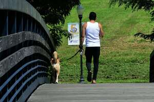 People walk at Oyster Shell Park Wednesday, August 25, 2021, in Norwalk, Conn. Loose dogs and increase in dog poop have become issue with residents.