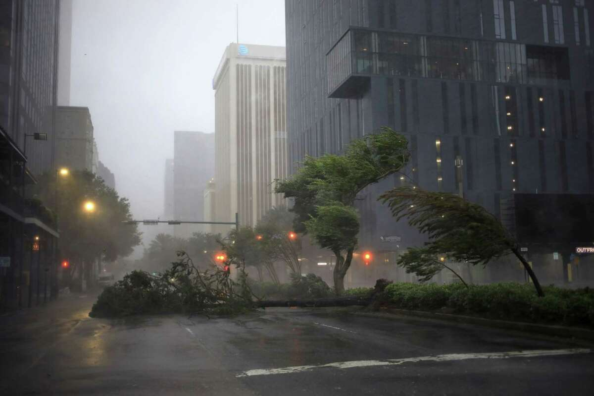 Trees are blown by gales from Hurricane Ida in downtown New Orleans on Aug. 29, 2021.