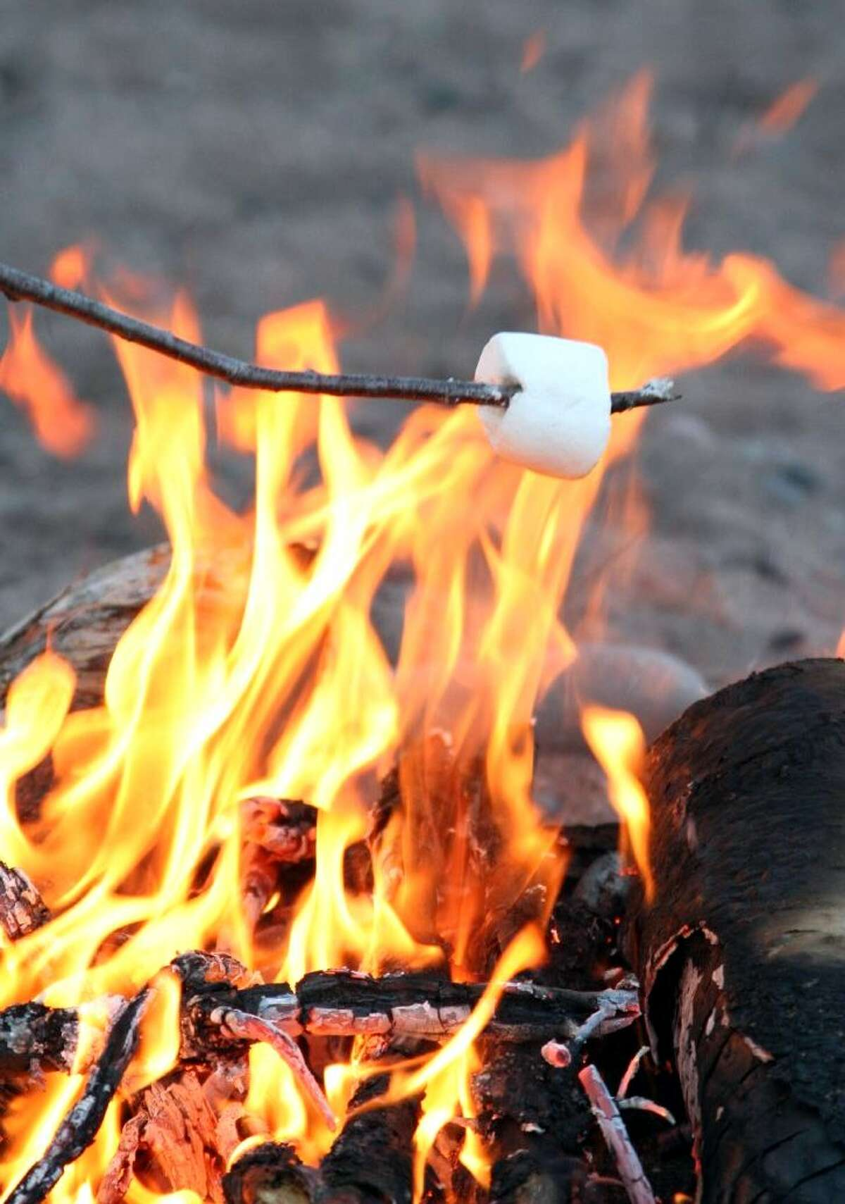 National Toasted Marshmallow Day is Aug. 30.