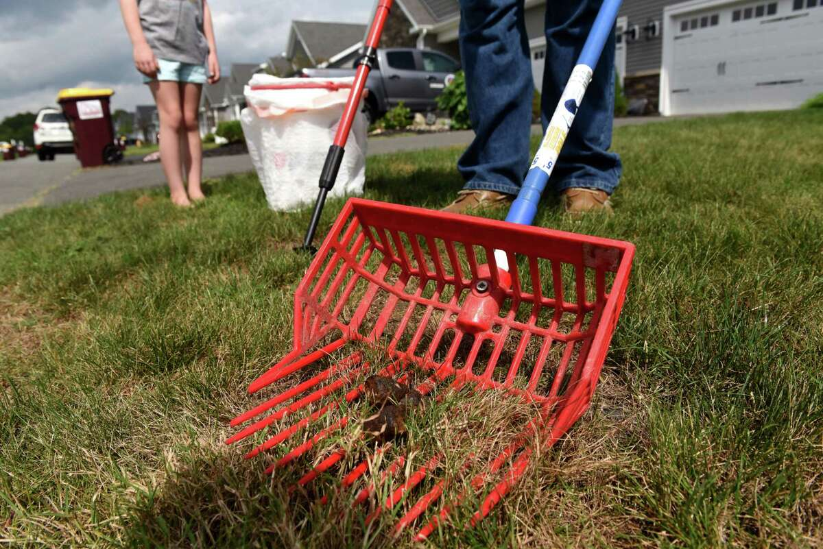 Jon Weidman, founder of Too Poop to Scoop, uses his dog poop scooping tools to clean doggie waste on Monday, Aug. 30, 2021, in Glenmont, N.Y. Too Poop to Scoop is a local business where Weidman and his employees scoop dog poop for people.