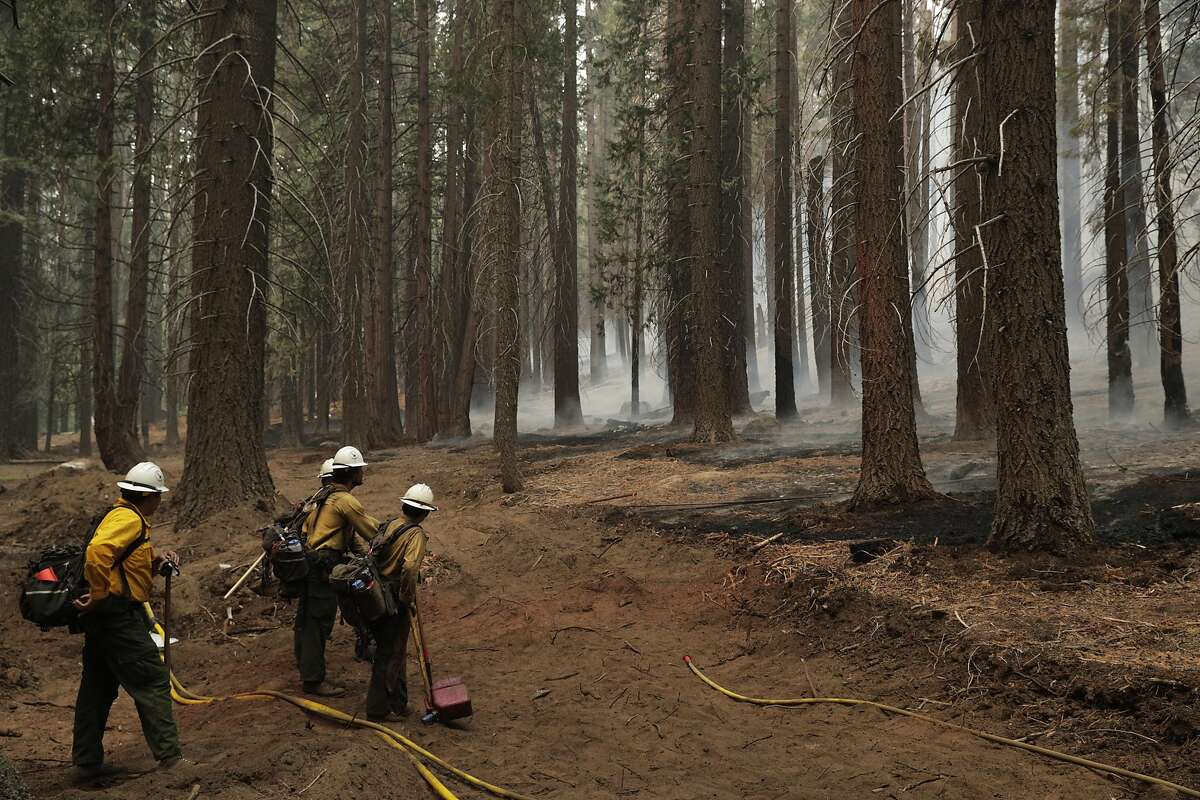 A crew of El Cariso Hotshots monitor a backburn druing structure protection at the Caldor Fire where crews are working the fire around the clock at Strawberry, Calif., on Sunday, August 29, 2021.