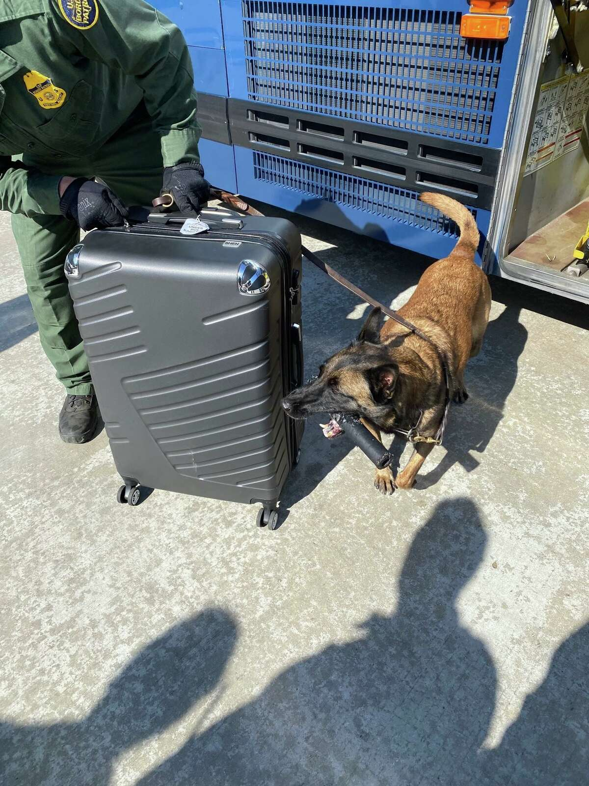 A K-9 unit alerts to a suitcase where U.S. Border Patrol agents said they found 20 pounds of marijuana. The contraband had an estimated street value of $16,500.
