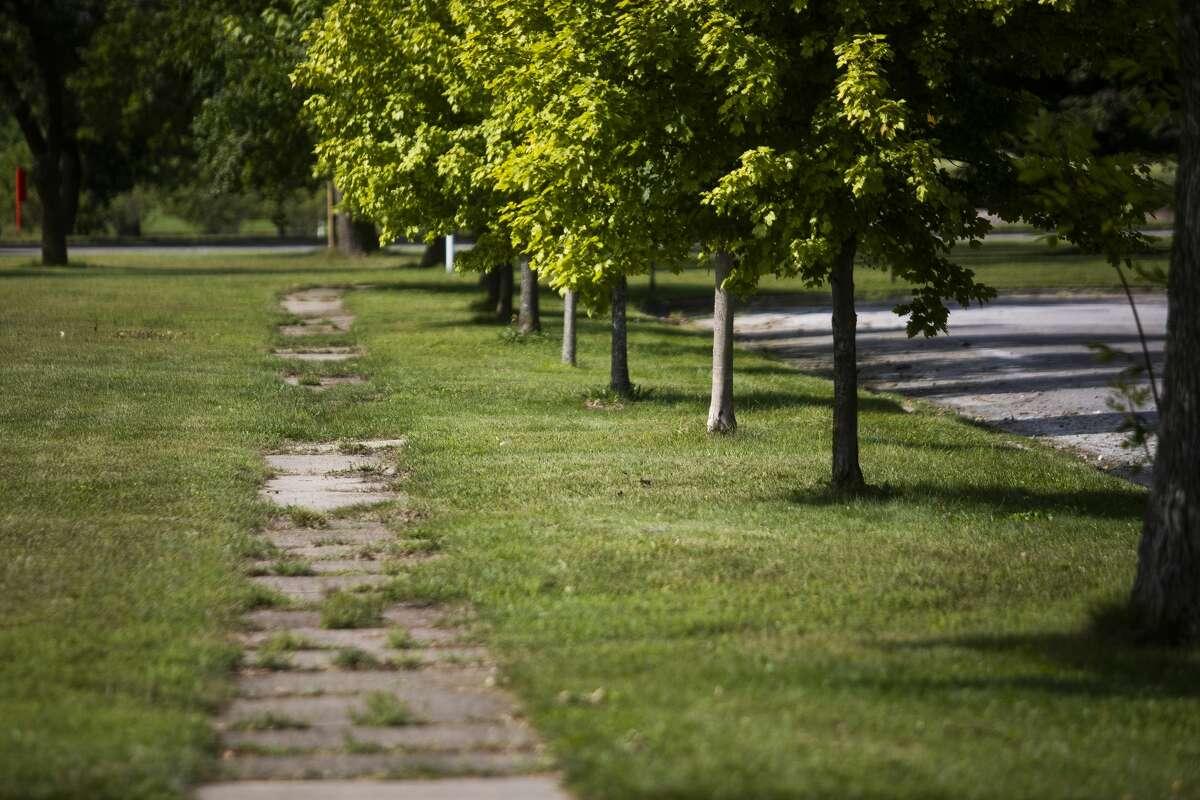 A sidewalk along Fournie Street is overgrown Tuesday, Aug. 31, 2021 in Midland. (Katy Kildee/kkildee@mdn.net)