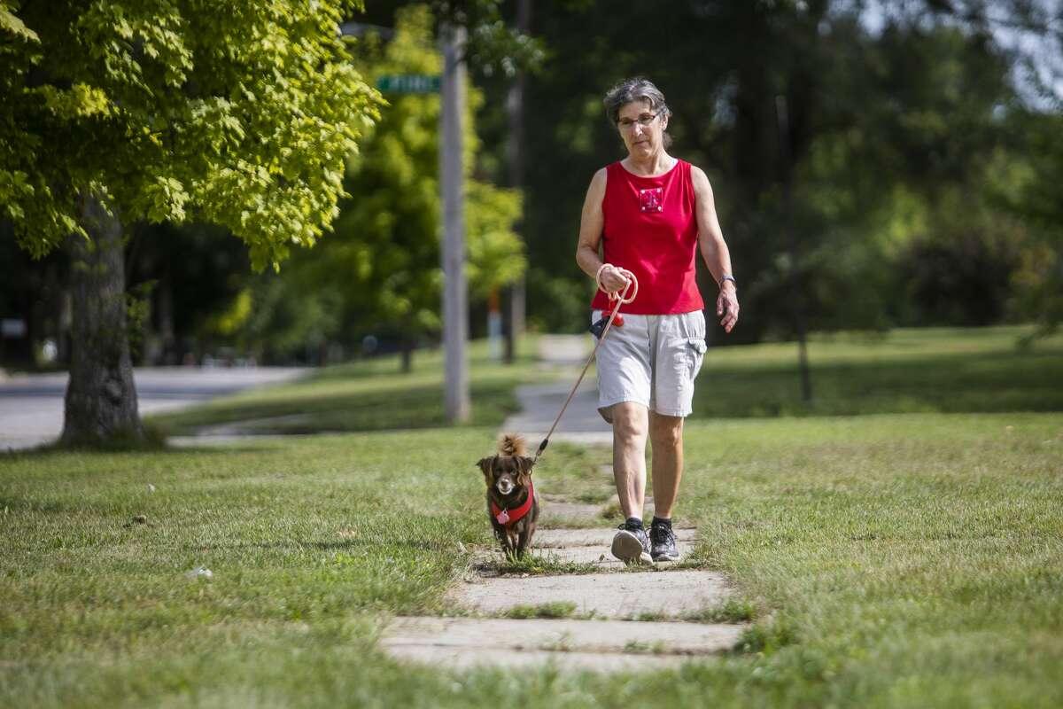 Janice Valeri-Rose walks along an overgrown sidewalk with her dog, Finn, Tuesday, Aug. 31, 2021 in Midland. (Katy Kildee/kkildee@mdn.net)