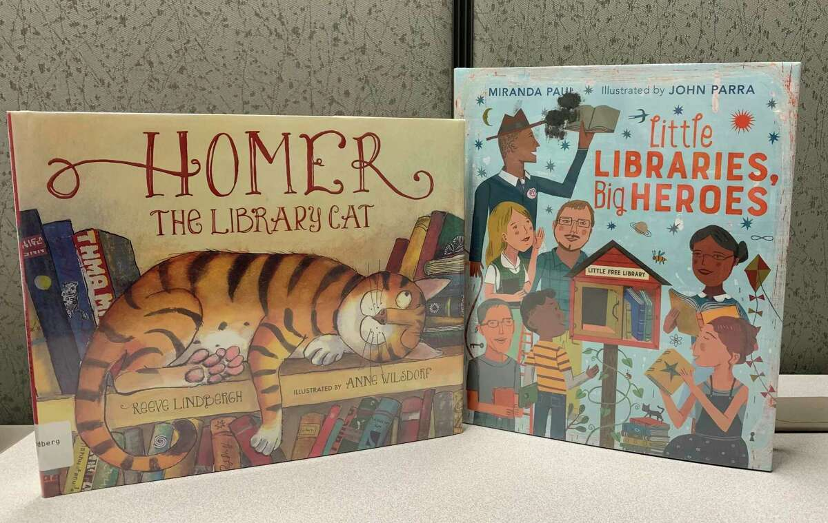 """Where do you go to get some peace and quiet?' Homer the Cat answers that question in """"Homer the Library Cat"""" by Reeve Lindbergh. Guess where he ends up? Older children might enjoy(Courtesy photo)"""