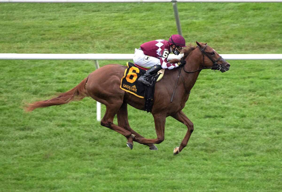 Coinage, with jockey Junior Alvarado, is clear of the field as he heads to the finish line and gets the win in the 17th running of the With Anticipation Stakes at Saratoga Race Course.
