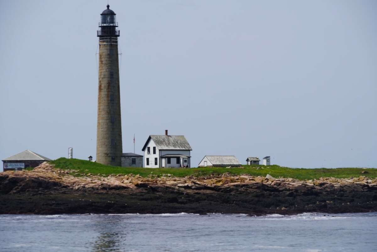 Bar Harbor Whale Watch Company in Bar Harbor, Maine, offers a Puffin and Lighthouse Cruise that allows you to see all the area lighthouses along with rare puffins.
