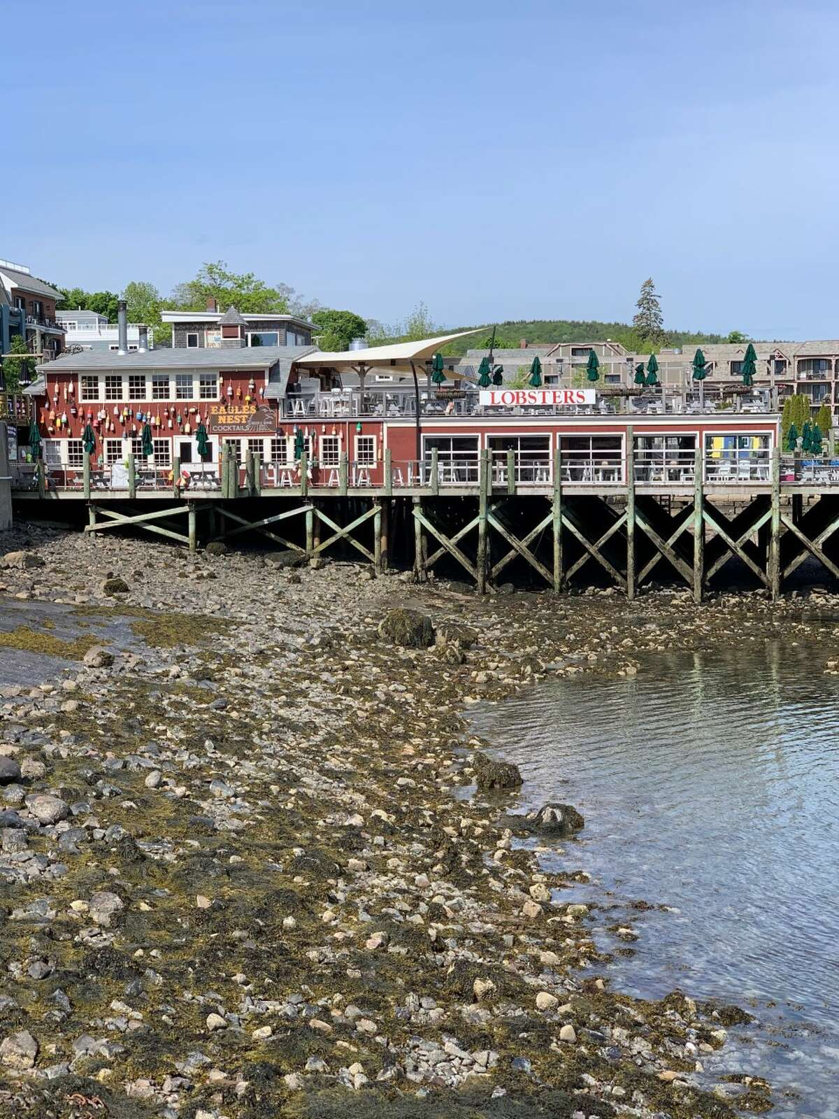 Bar Harbor, Maine, is a prime destination for viewing wildlife, exploring nature, relaxing by the beach and indulging in some of the best lobster you've ever had.