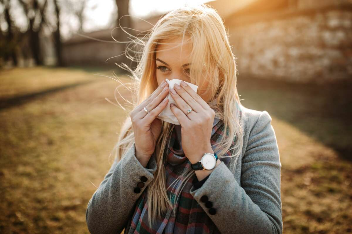 The weather service AccuWeather said pollen counts will be high in most of Illinois. Ragweed and mold, which can be caused by accumulations of damp leaves, will be some of the biggest contributors, according to its fall outlook.