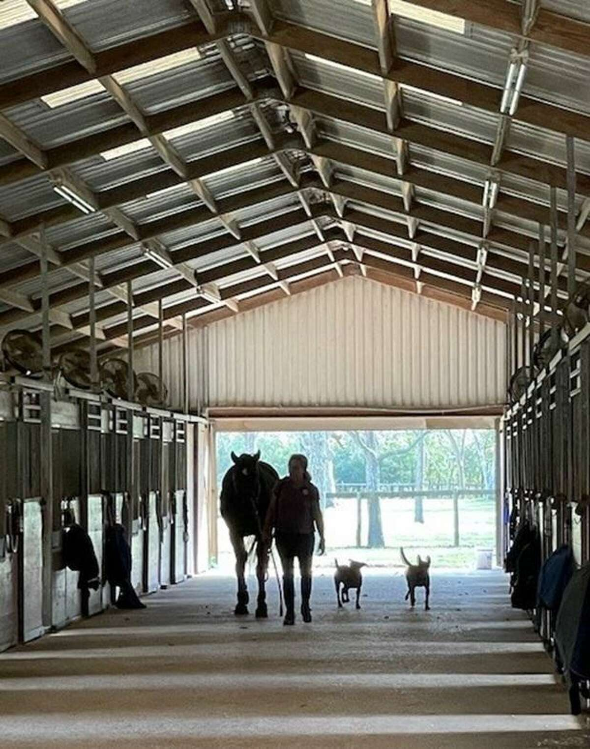 SIRE recently announced it has a permanent home in Fulshear, Texas. SIRE Therapeutic Horsemanship is located on a 40-acre equine site at 7206 Pool Hill Road in Fulshear, just southwest of Katy.