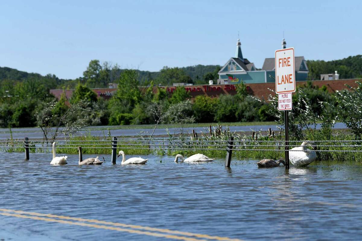 The back parking lot at the Danbury Fair Mall is flooded after heavy rains resulting from Hurricane Ida, causing the pond to flood it's banks and creating more swimming room for wildlife, Thursday, Sept. 2, 2021.