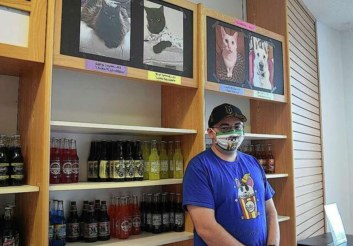 Bolt's ice cream shop owner Brett Bettis stands in front of a wall featuring photos of the shop's executive board - all of them animals.