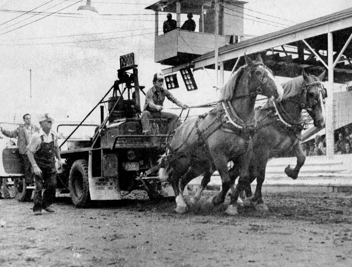 Benny Reed, of the Reed Brothers pulling team, of Bear Lake, extolls his team -- but not enough -- as his brother Larry won top prize in the contest. The horse pulling contest was held last night at the Manistee County Fair. The photo was published in the News Advocate on Sept. 4, 1981. (Manistee County Historical Museum photo)