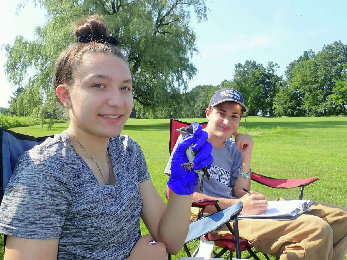 Summer interns Ashley Wilkins and Aiden Cherniske processing a purple martin nestling.