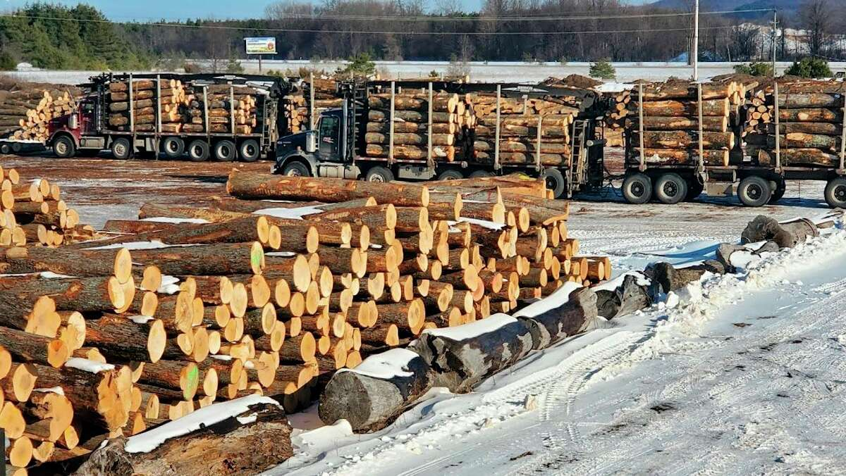 The public is being invited to Silver Leaf Sawmill to learn how forestry can help protect the environment from climate change. (Courtesy Photo)