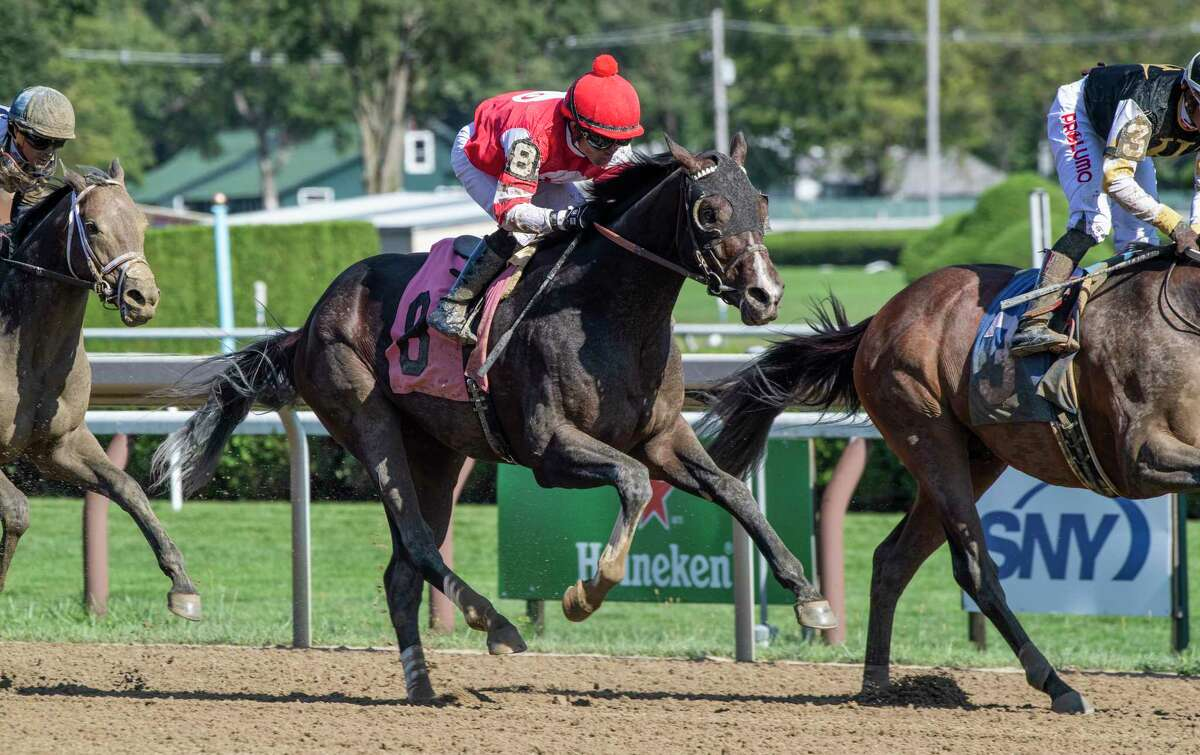 Two year old colt Galt, a full brother to Champion Filly Songbird, who was ridden by jockey Joel Rosario finished up the track in his first start at the Saratoga Race Course Saturday Sep, 4, 2021 in Saratoga Springs, N.Y. Special to the Times Union Photo by Skip Dickstein