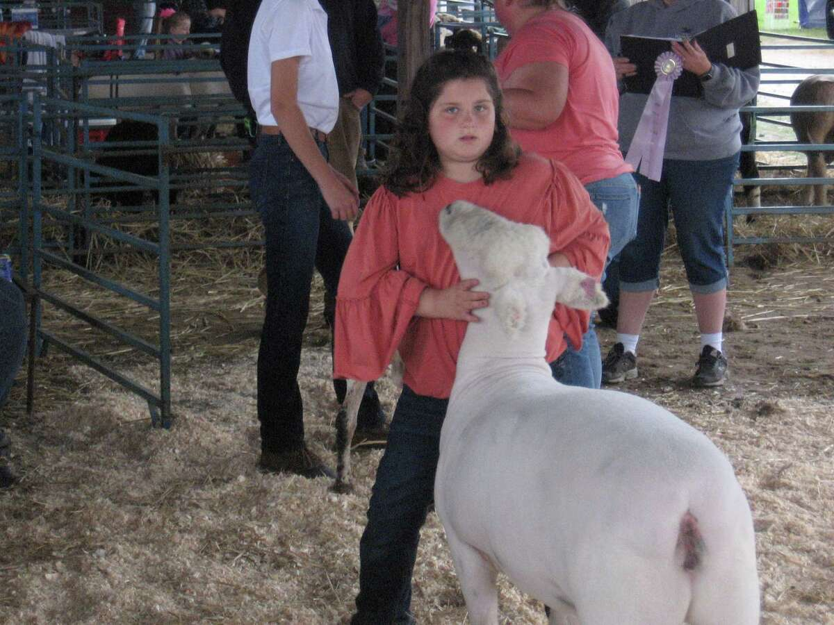Katie Drum of Pleasant Valley, New York, holds her sheep while in the ring at the Goshen Fair, Sept. 5.