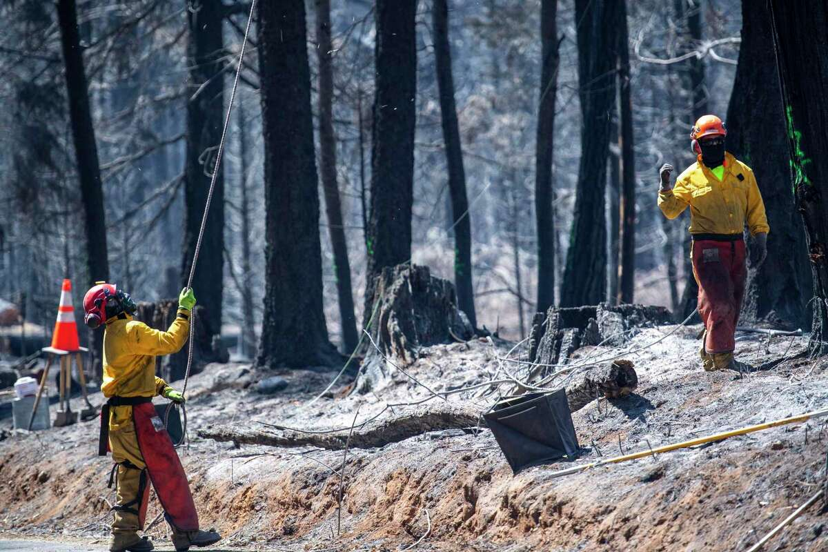 Crews work to remove burned trees that are in danger of falling. Many homes were lost in Grizzly Flats, near where the Caldor Fire started. Photographed on Sunday September 5, 2021.